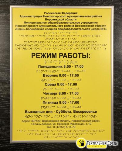 тактильная-табличка-со-шрифтом-брайля-Елань-Коленовская-СОШ-1-Воронеж