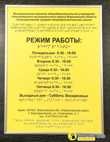 тактильная-табличка-со-шрифтом-брайля-бороздиновская-средняя-общеобразовательная-школа-Воронеж