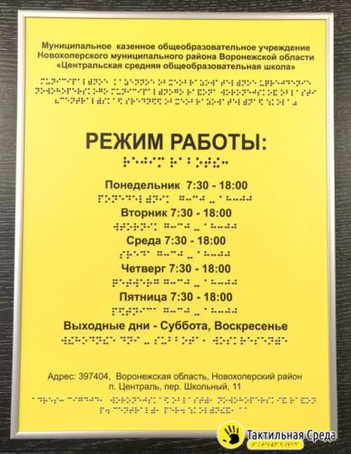 тактильная-табличка-со-шрифтом-брайля-центральская-средне-образовательная-школа-Воронеж