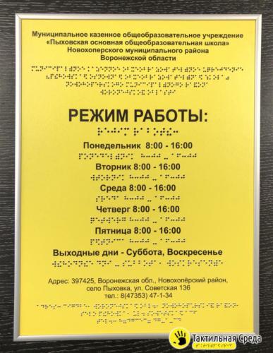 тактильня-табличка-со-шрифтом-брайля-пыховская-общеобразовательная-школа-Воронеж